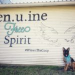 Get your WINGS pic at Flown The Coop in Burton, TX!