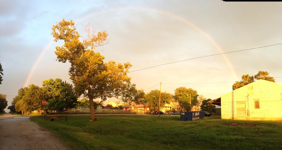 Flown The Coop sealed with the promise of a rainbow